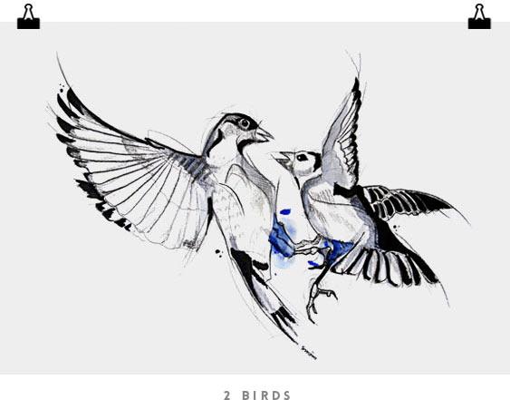 2_birds
