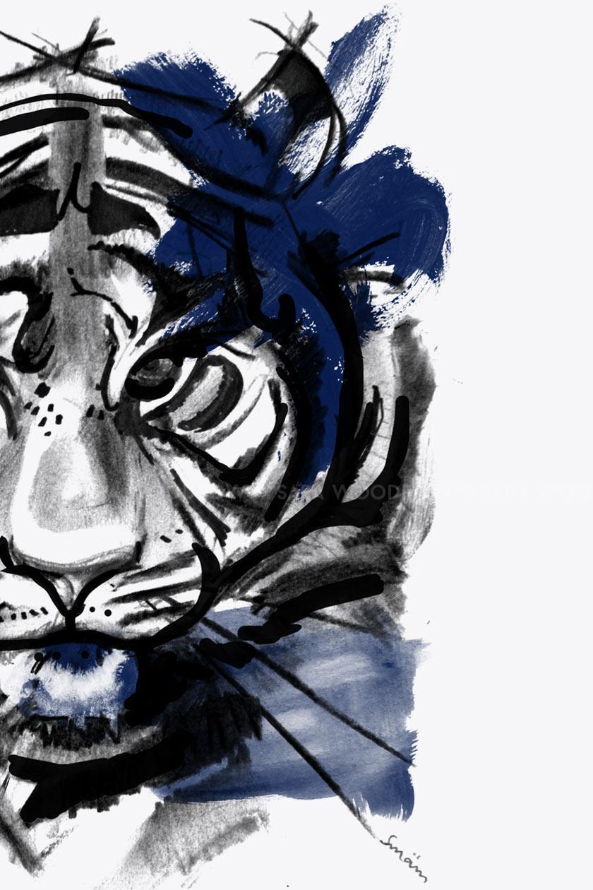 Blue_Tiger_01