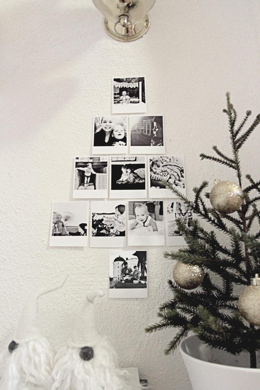 Insta_Tree_05