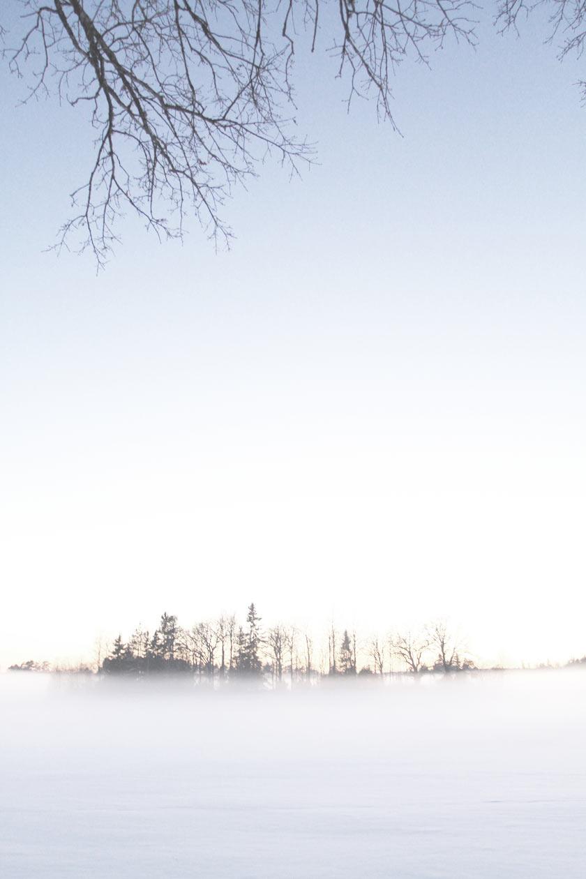 Snow_Mist_02