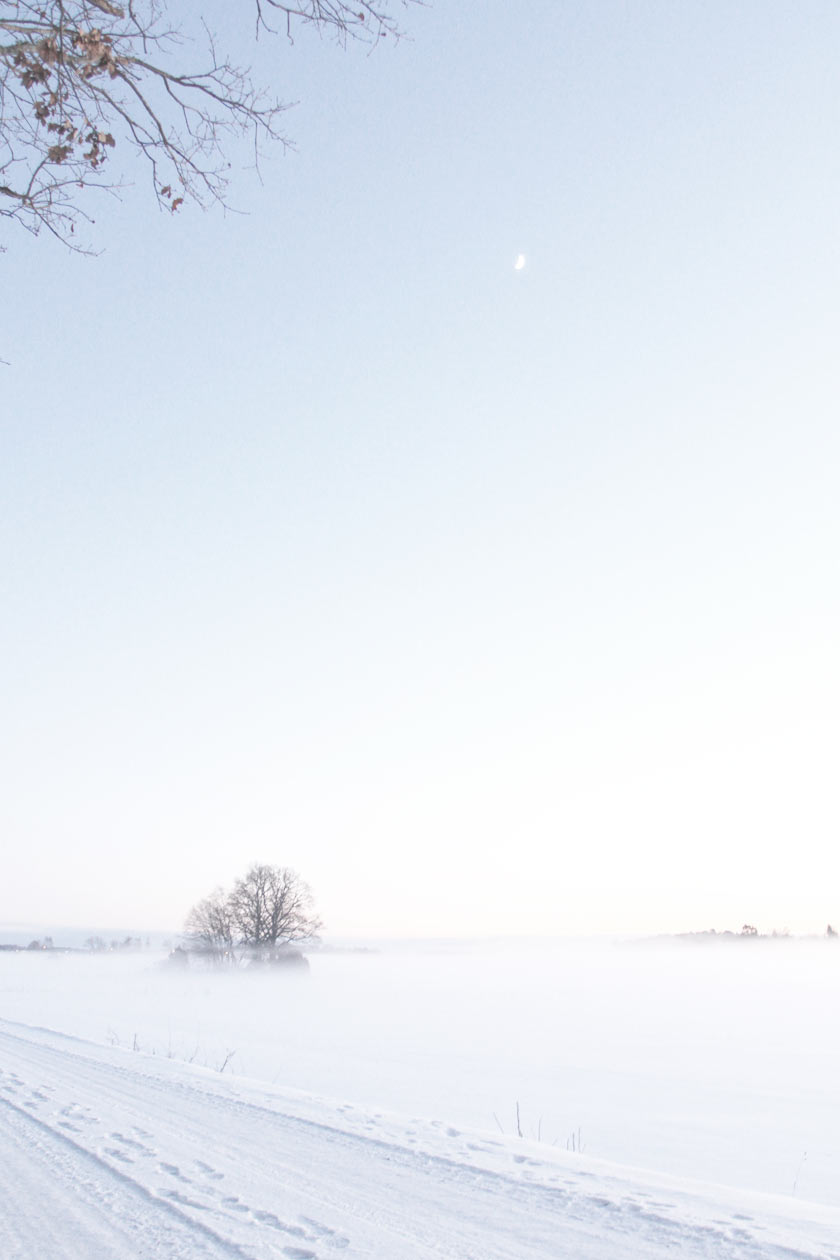 Snow_Mist_03