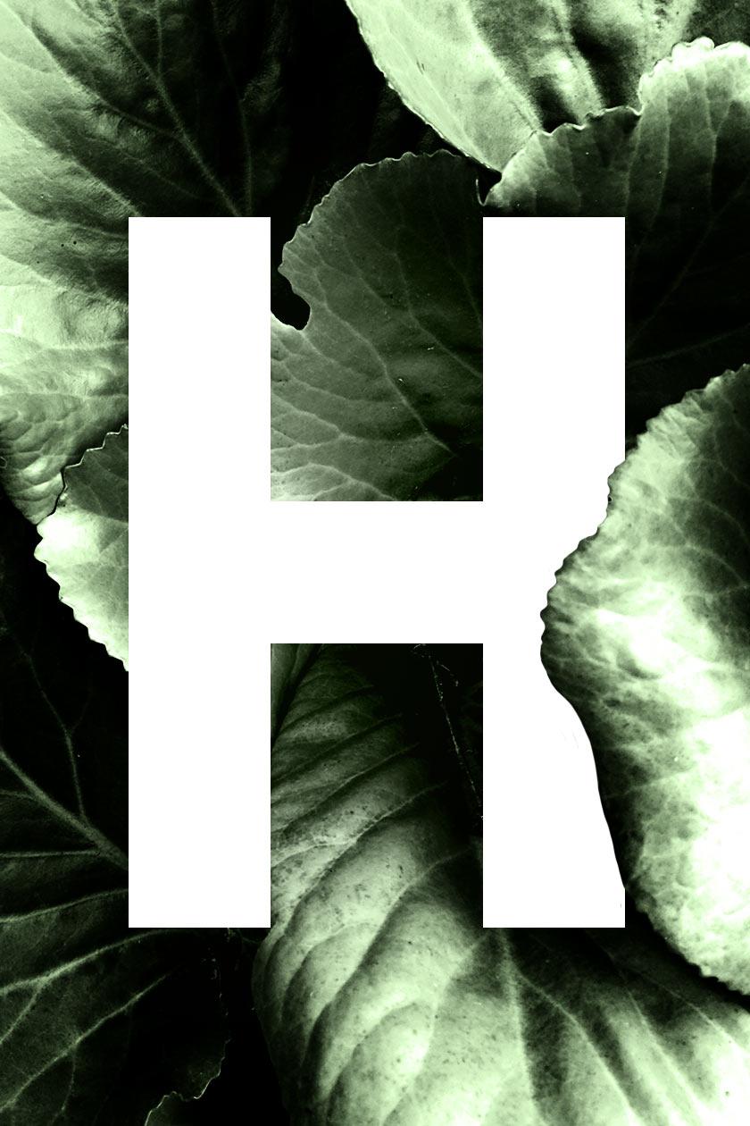 HELLO_01