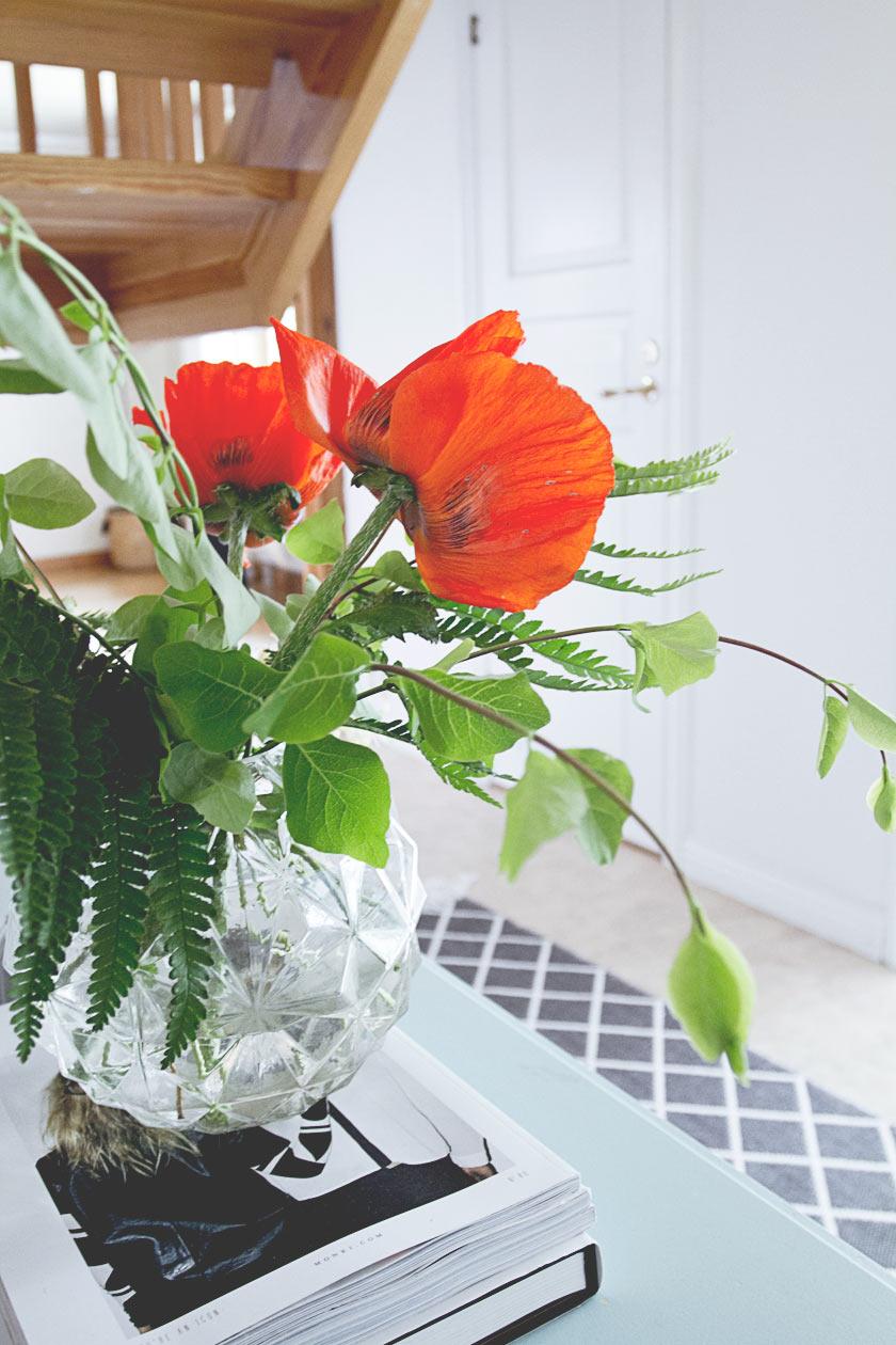 Poppies_Garden_02