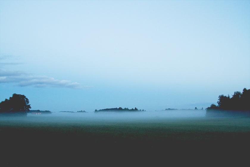 Summer_Mist_03