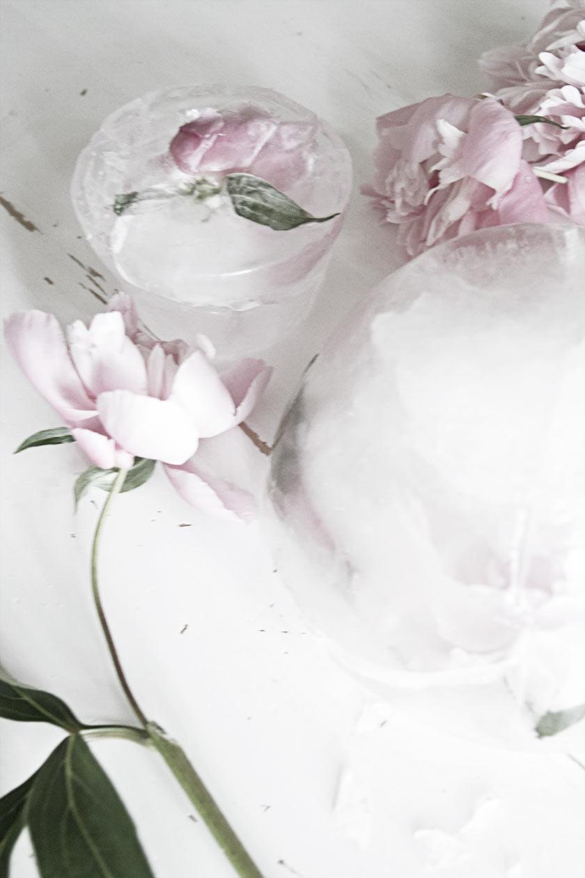 Ice_Flowers_03