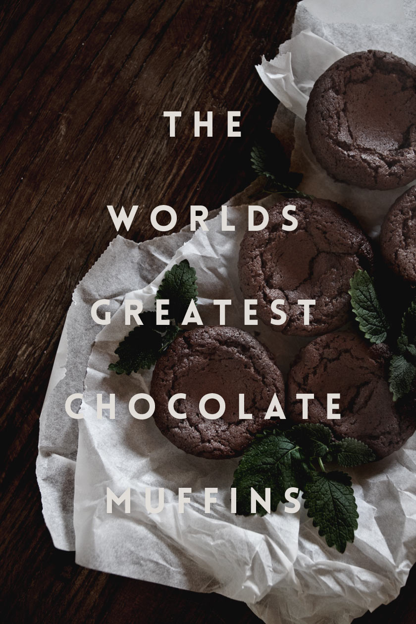 The_Worlds_Greatest_Chocolate_Muffins_01