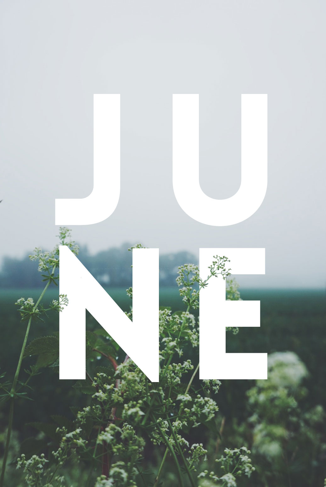 June_01
