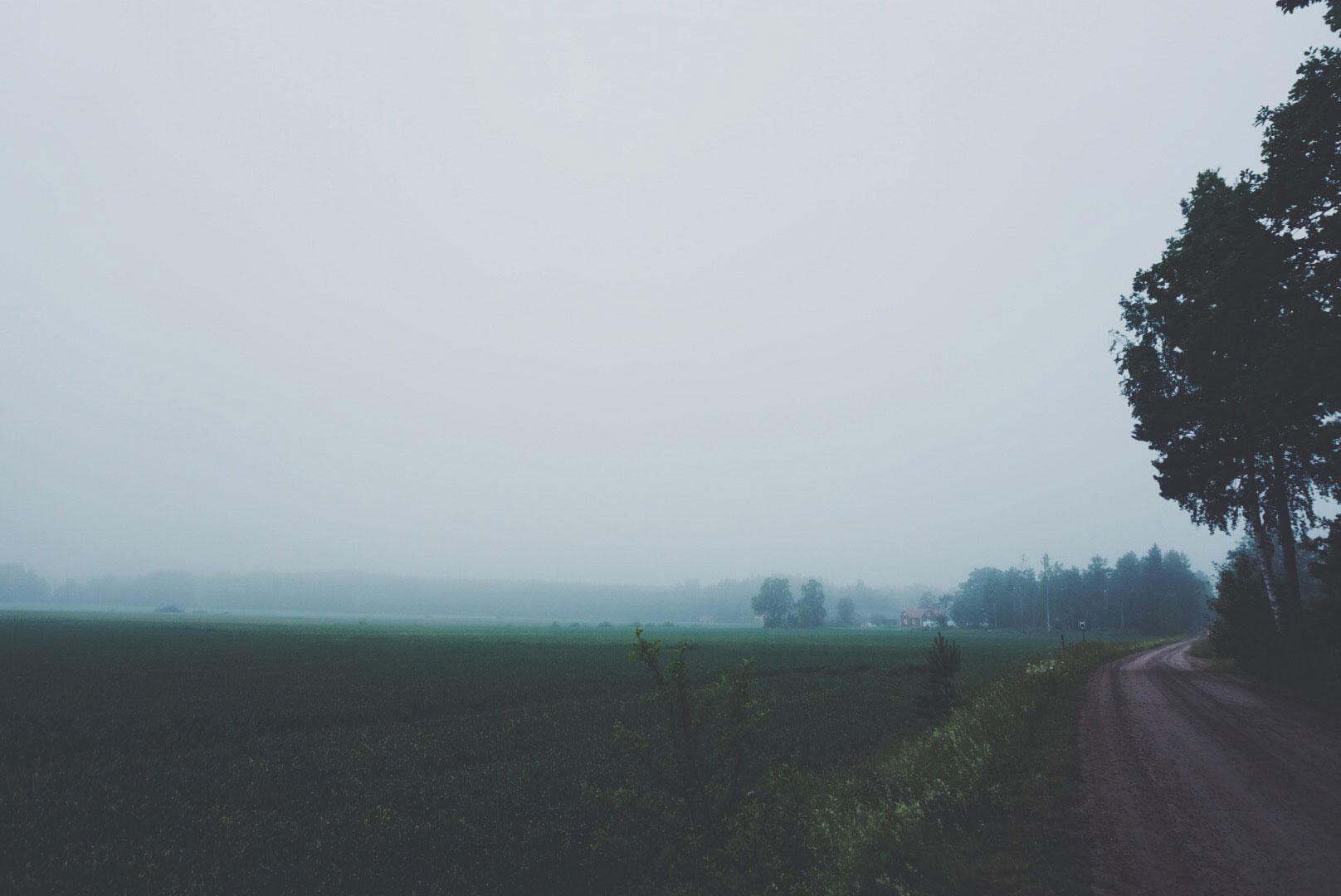 June_04